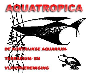 aquatropica